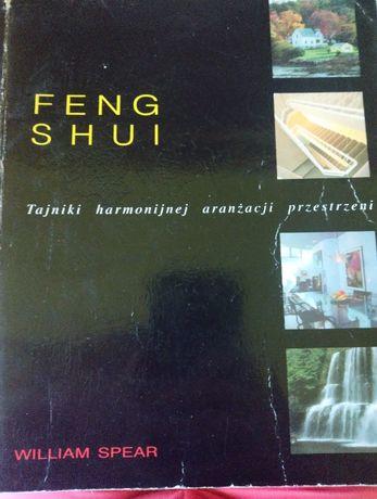 Feng shui - tajniki harmonijnej aranżacji przestrzeni