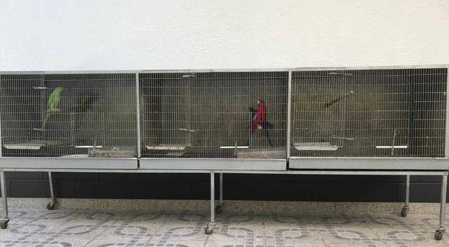 Gaiola/Viveiro Aves