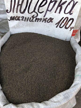 Семена люцерны на посев.