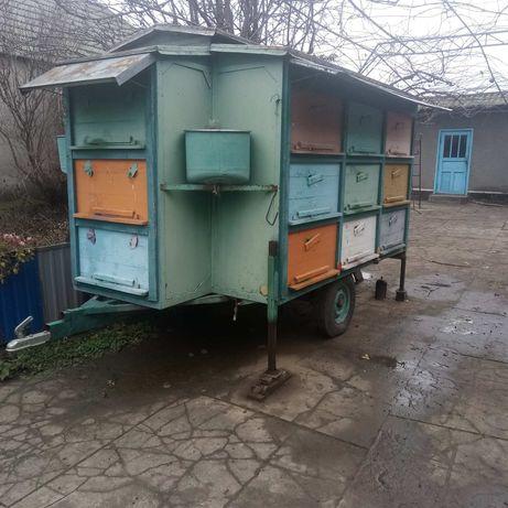 Продам прицеп для пчел