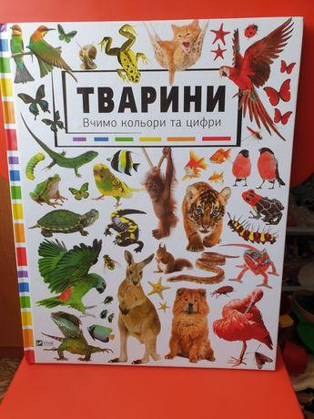 "Книга ""Вивчаємо кольори"""