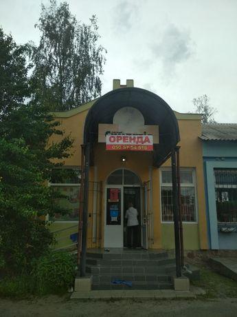 Оренда торгового приміщення в смт. КОТЕЛЬВА