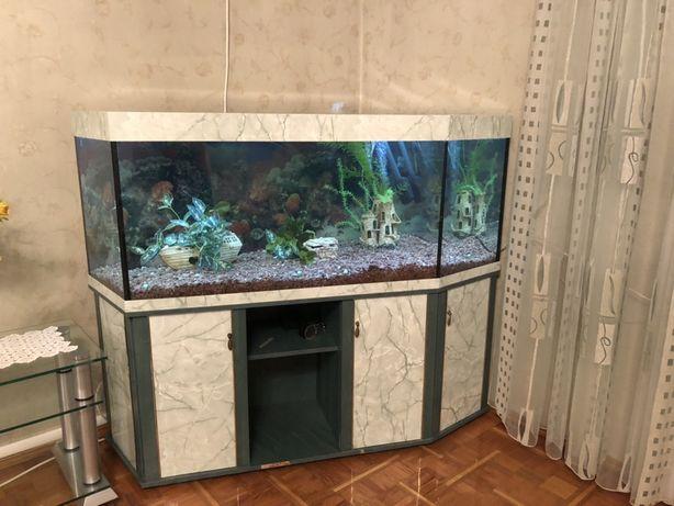 Продам угловой аквариум 800 литров с оборудованием