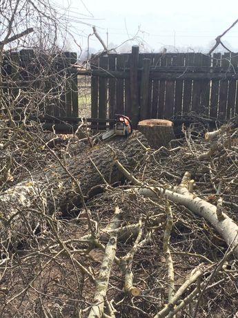 Пиляння дерев та дров