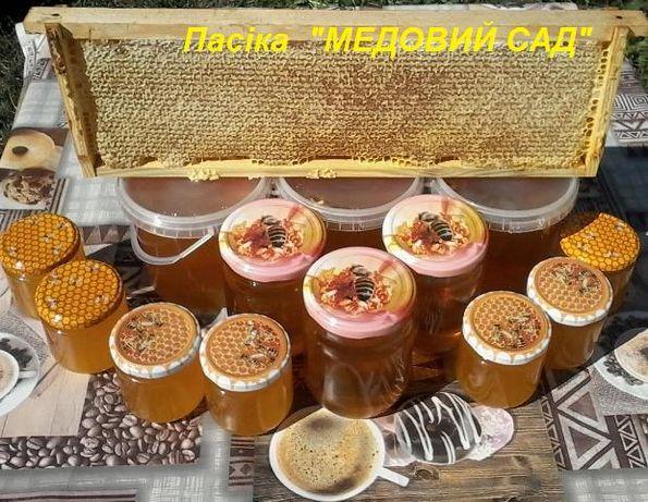 Мед натуральний ДСТУ 4497