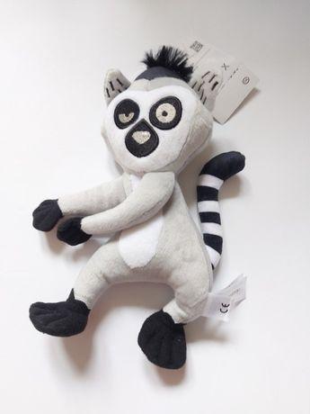 Król Julian nowa maskotka lemur Madagaskar