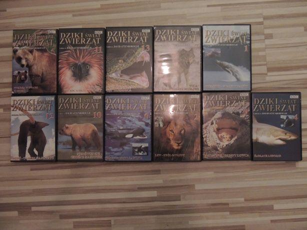 Film DVD przyrodnicze dzikie zwierzęta bbc