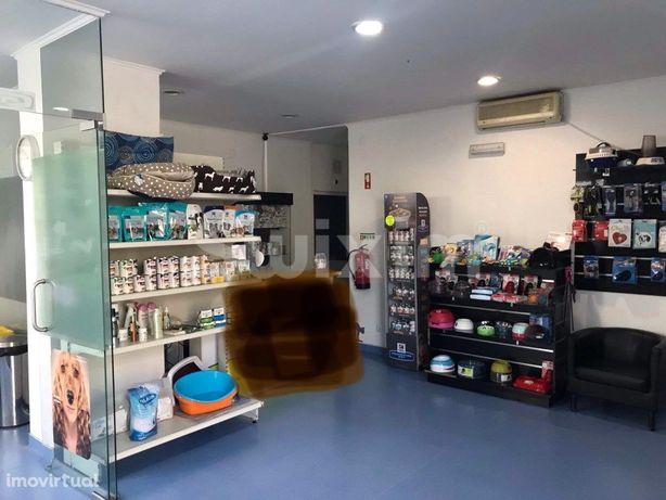 Clinica Veterinária em Almada