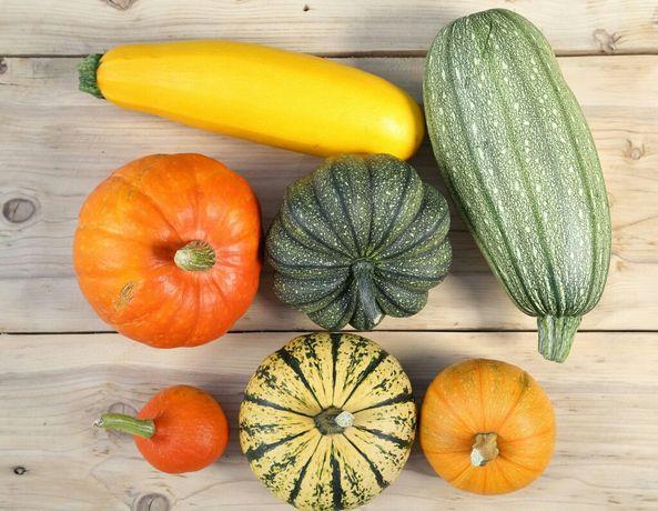 Продам овощи на корм для животных.