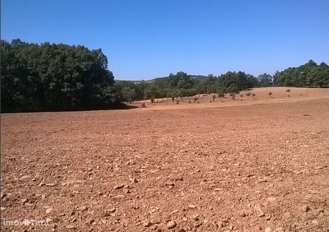Terreno  Venda em Vilar de Ossos,Vinhais