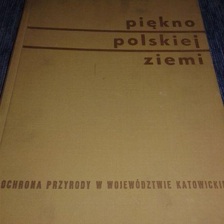 Ochrona przyrody w katowickim Piękno polskiej ziemi