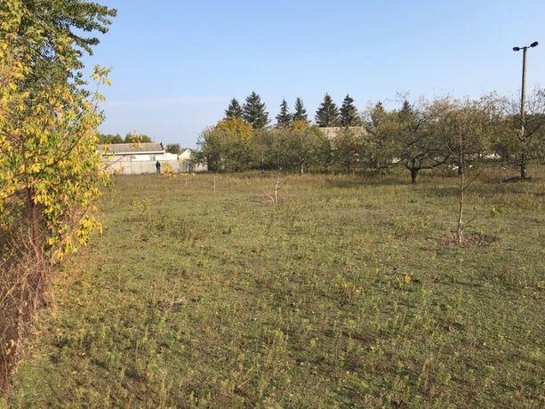 Продається земельна ділянка в с. Вереміївка
