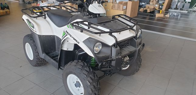 Kawasaki brute forse 300