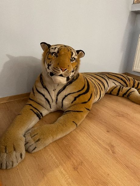 Pluszak Tygrys 160cm + 100 cm ogon !!!
