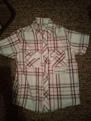 Koszule chłopięce 134-158
