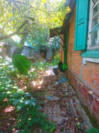 Продам дом в Граково, Чугуевский район