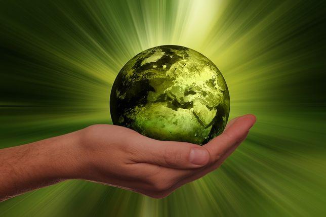 Czyściwa ekologiczne