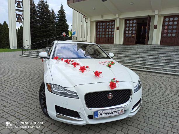 Auto do ślubu-JAGUAR XF-Najnowszy model.