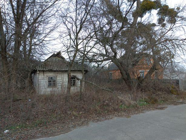 Продам земельный участок в с. Берестянка, Бородянского р-н
