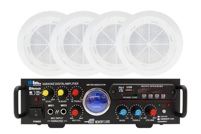 Акустический комплект SKY SOUND CSM-2504 - Низкая цена! Выбор