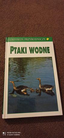 Ptaki wodne - leksykon przyrodniczy