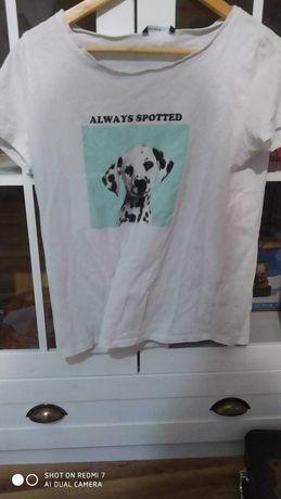 Koszulka z House M! Szybka wysyłka
