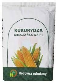 Kukurydza nasiona kwalifikowa Sm Piast