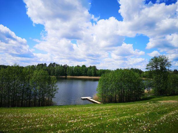 Działka nad jeziorem, wynajem, kemping, pole kempingowe