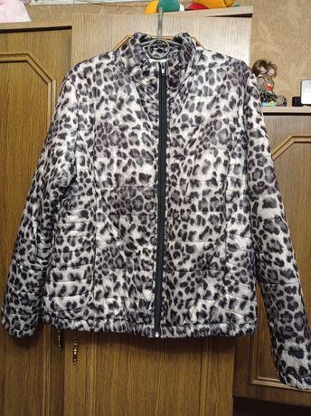Куртки ветровки пиджаки спортивный костюм.