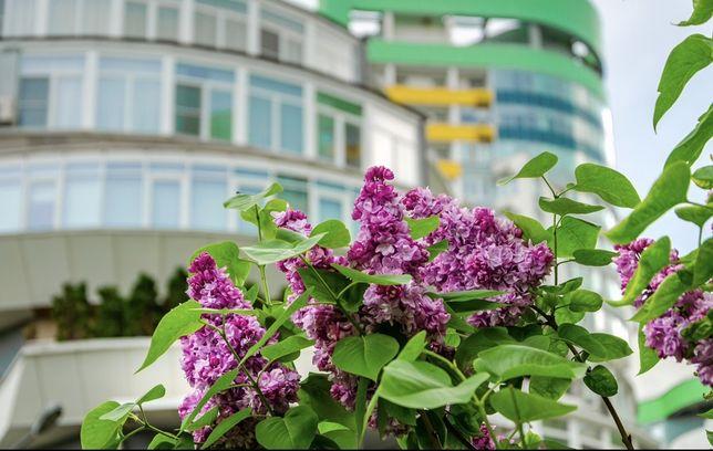 1-комнатная квартира,ул. Вышгородская 45, ЖК Паркове Місто