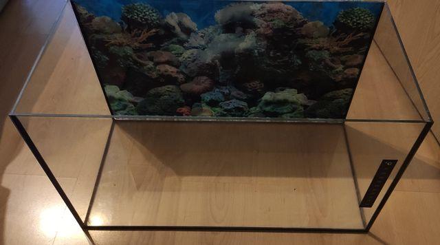 Akwarium o pojemności 37 L.