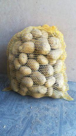 Ziemniaki, cebula, pietruszka, marchew, buraczki, czosnek, Jaja.