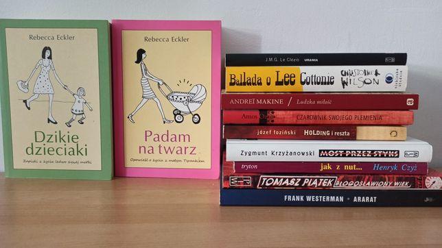 Zestaw książek nr 1 - proza polska i zagraniczna