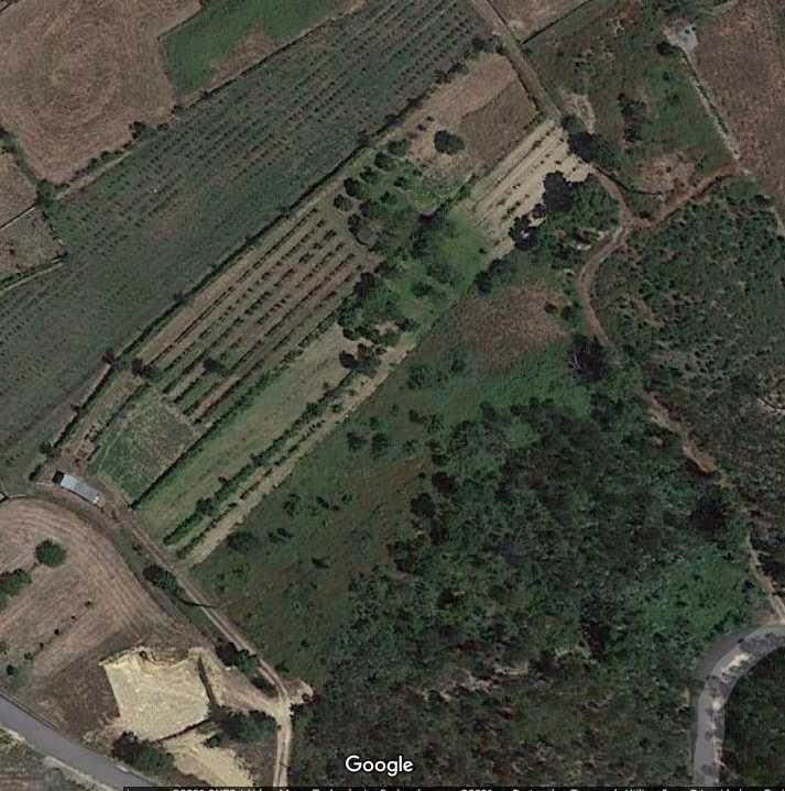 Arrenda-se Terreno agrícola A-Dos-Ferreiros, Agueda 3.300 m2