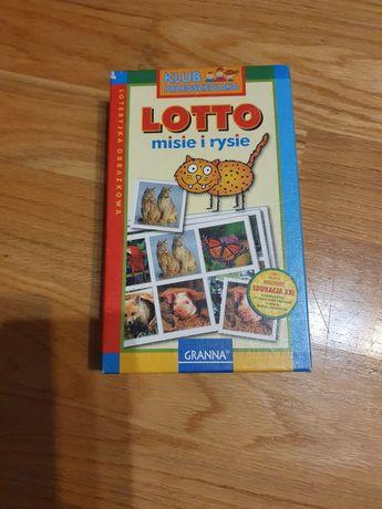 Lotto misie i rysie
