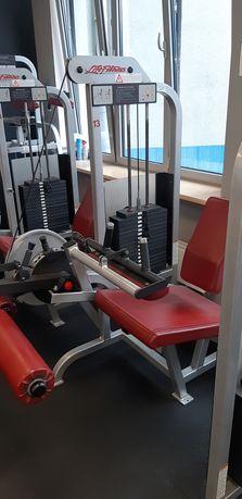 Liffe Fitness 2 maszyny CZWORO i DWU głowy ud !