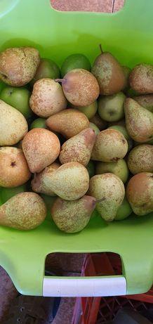 Fruta Pera Rocha