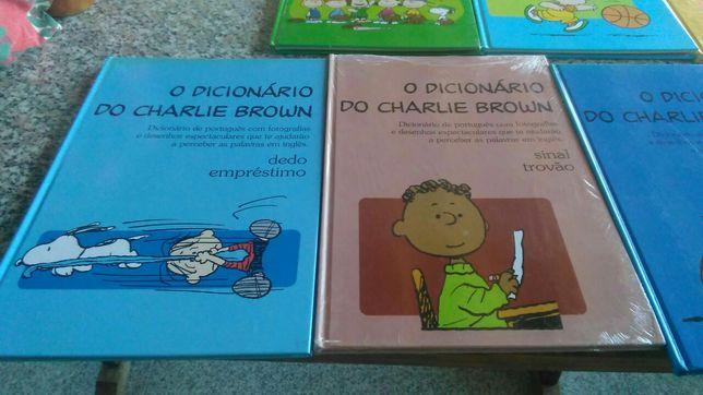 Vários dicionários novos