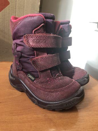 Термо ботинки ecco, сапожки ecco