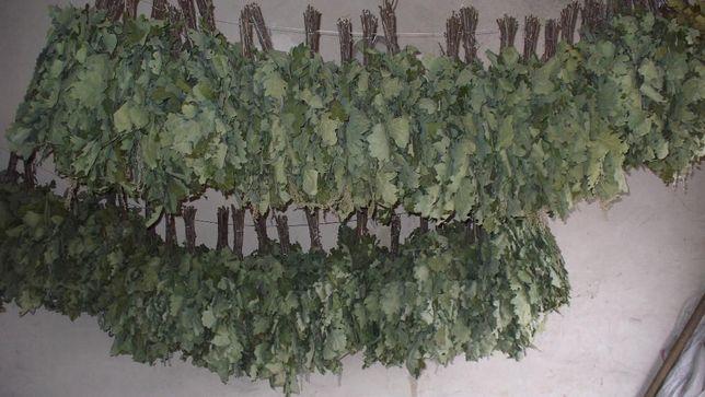 продаются банные дубовые веники с добавлением веточек полыни и липы