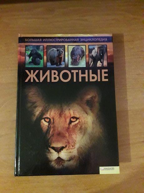 Книга Животные 2011 год