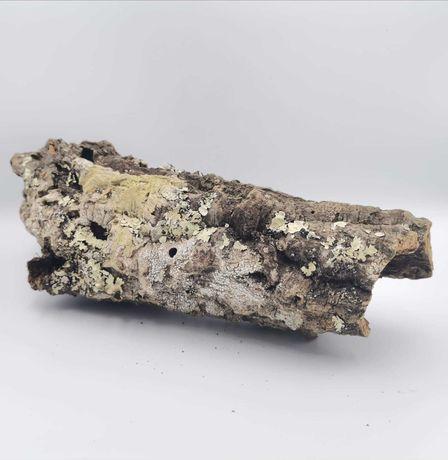 Tuba korkowa, kora dębu korkowego 20 x 9-11 rozmiar M