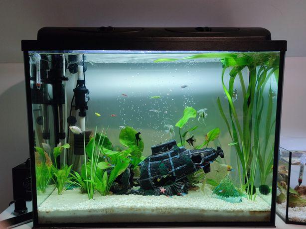Akwarium 170 l szczelne