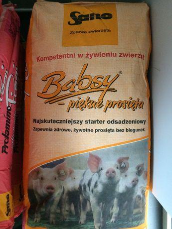 Pasze i koncentraty dla trzody chlewnej, pasze dla świń Sano