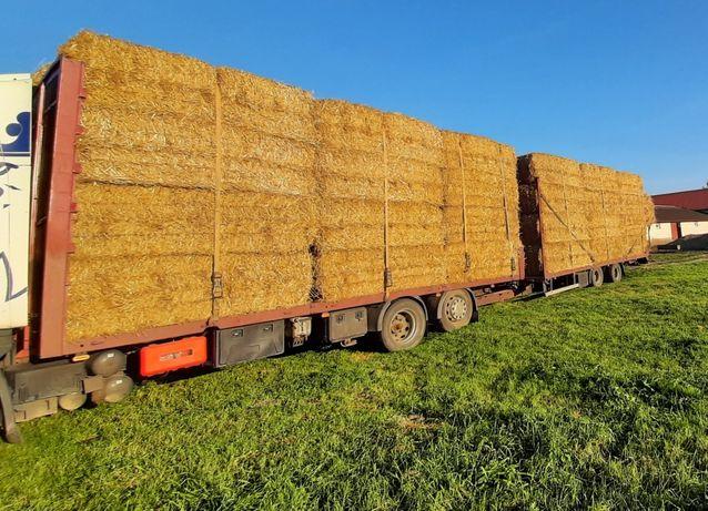 Słoma duża kostka 260x120x80 * transport