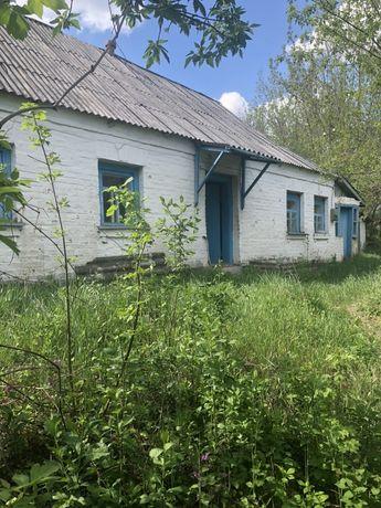 Продам дом ( дача) в Київській області