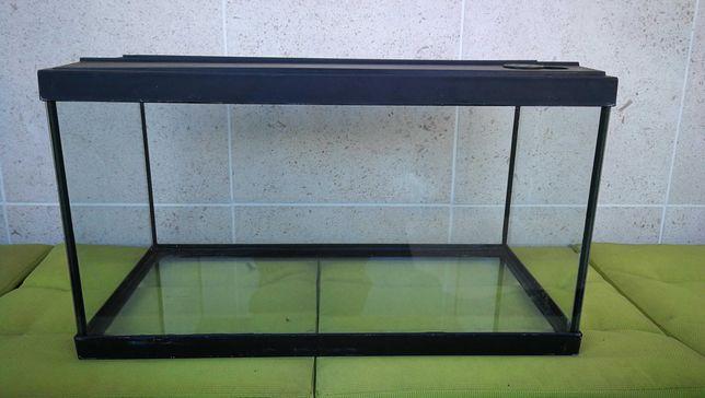 Aquário para peixes e tartarugas