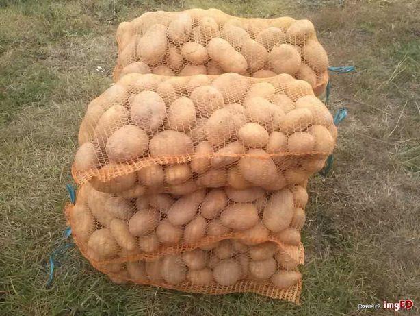Sprzedam ziemniaki Elfi i Lordy