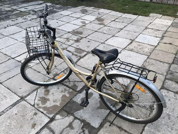 Rower, przerzutki shimano, koszyk przy kierownicy