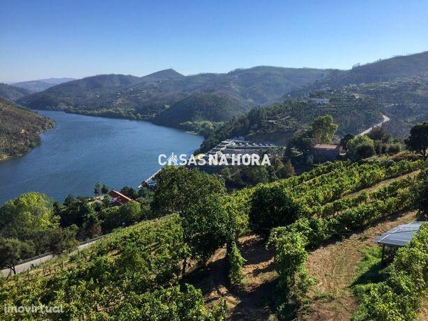 Quinta produtiva às margens do Rio Douro